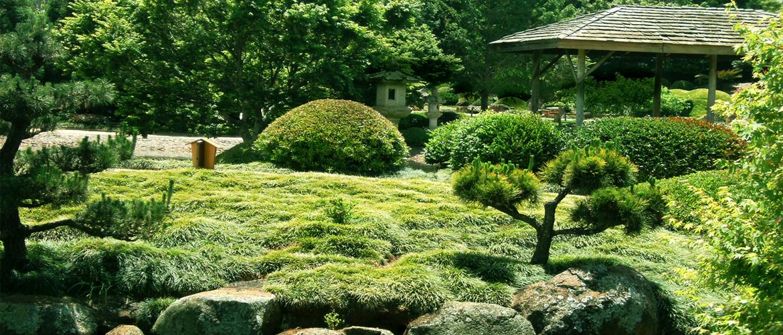 Ми перетворимо ваш сад